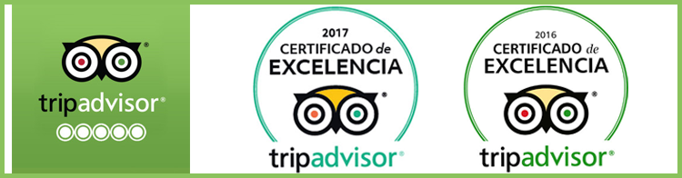 Excellence Certificate Tripadvisor Room Escape